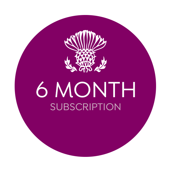 weebox 6 month subscription
